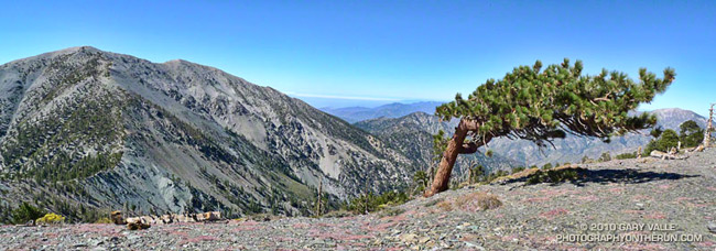 Mt. Baldy from the North Backbone Trail