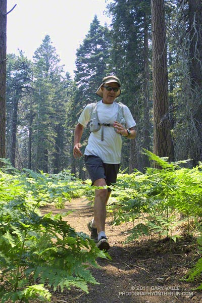 Running in the San Jacinto Wilderness, near Skunk Cabbage Meadow