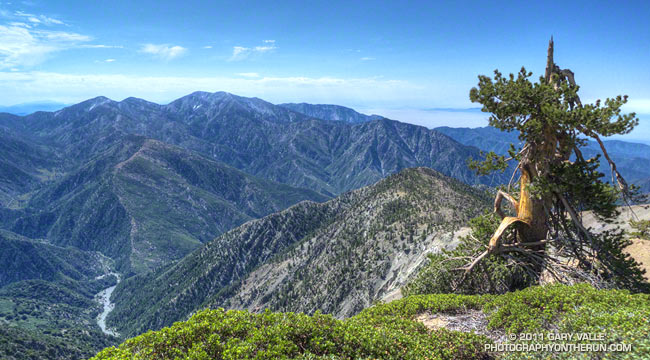 Mt. Baldy from Mt. Baden-Powell