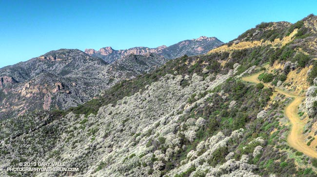 Etz Meloy segment of the Backbone Trail