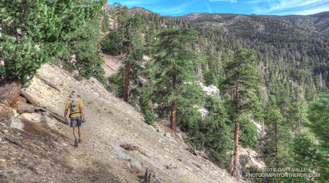 Falls Creek Trail on San Gorgonio MOuntain