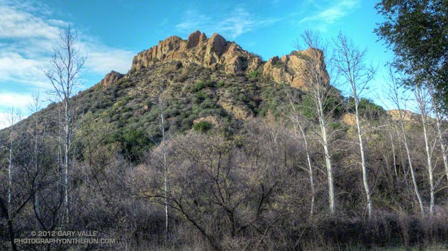 Hogback and sycamores near the M*A*S*H site in Malibu Creek State Park