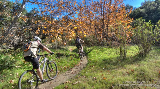 Mountain bikers on the Sheep Corral Trail near upper Las Virgenes Canyon road.