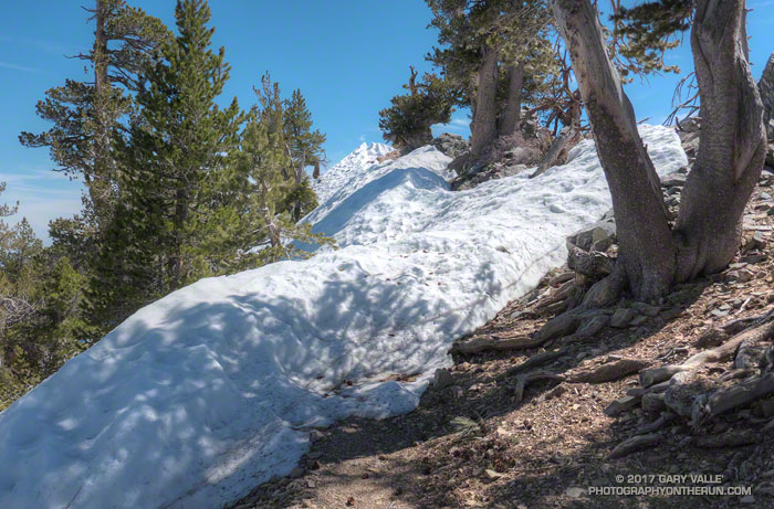 Snow on the PCT east of Mt. Burnham.