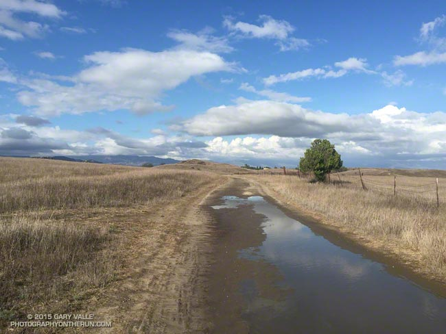 Mud puddles on Lasky Mesa following record rainfall on September 17, 2015.