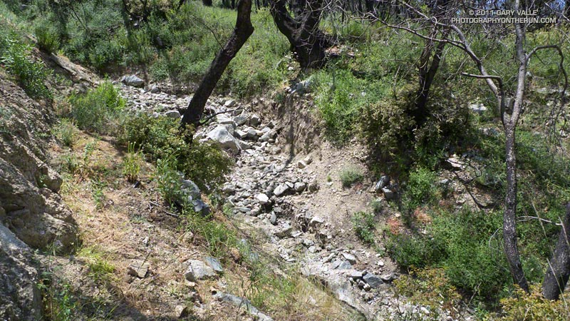 Debris flow runnel several feet deep across the Gabrielino Trail above Switzer Picnic Area. May 21, 2011.