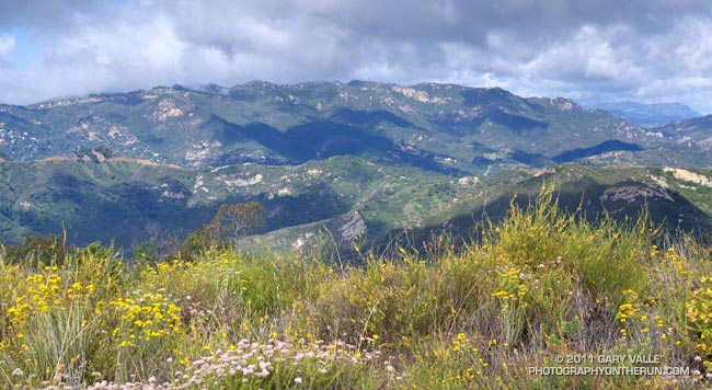 View west across Topanga Canyon to Saddle Peak from viewpoint near the Temescal Ridge Trail.