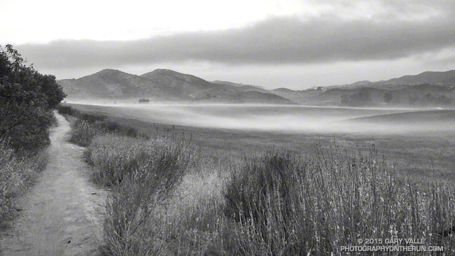 Radiation fog at Satwiwa on the way to Pt. Mugu State Park