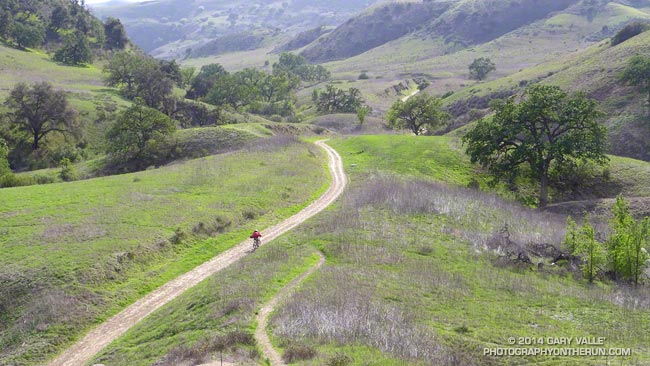 Mountain biker riding down East Las Virgenes Canyon in Ahmanson Ranch.