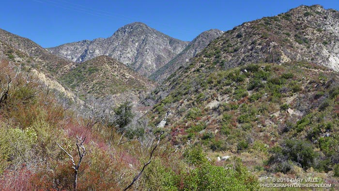 Strawberry Peak and Colby Canyon