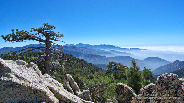 View east from Mt. Waterman to Mt. Baldy